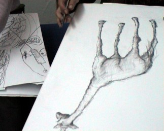 girafe-09